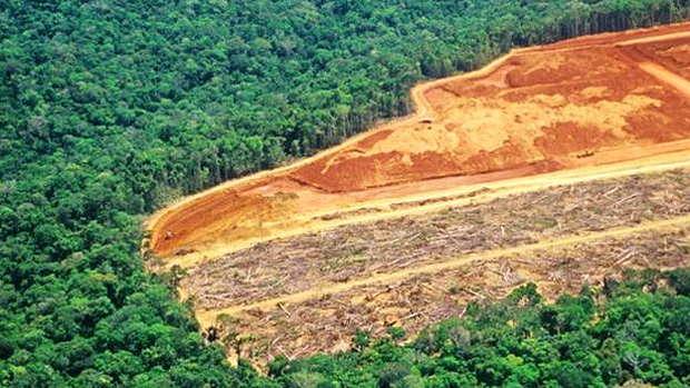 The main factor that is keeping Brazil from meeting its greenhouse gas emission targets, which were set out in the Paris Agreement, is deforestation
