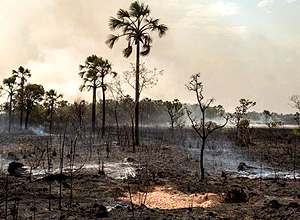 Climate Change Increases Risk of Firestorms