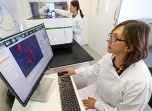 Brazilian Lab Runs Diagnostic Imaging Test for Zika Infections