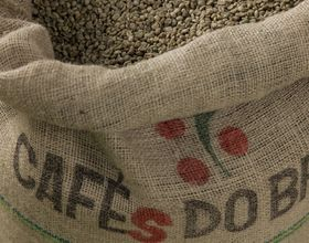 The Perfect Sack of Coffee Can Cost up to Twenty Times more than Standard Kinds