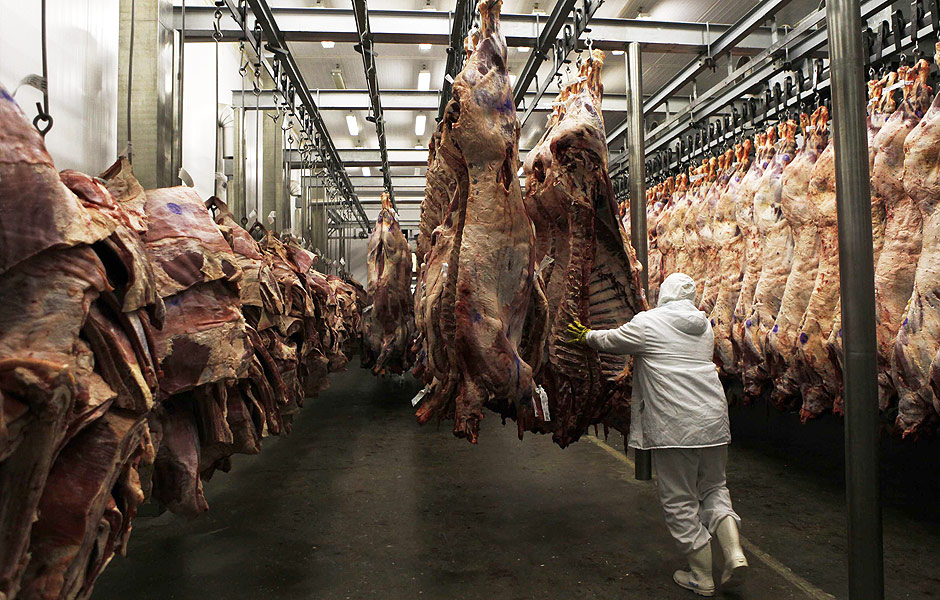 A worker arranges slaughtered cattle in the freezing room in the Marfrig Group slaughter house in Promissao (SP)