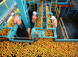 Change in Consumption Habits Pressures Brazilian Orange Juice Future (market) Prices