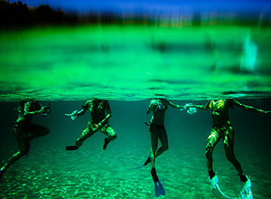 Fernando de Noronha Island Attracts Divers Looking for a Wide Variety of Marine Life