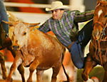 Competitors during the Bulldog 56v event at the Festa do Peo [Cowboy Festival], in Barretos, SP
