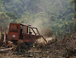 "A tractor works at the deforestation by the ""travess�o 27"", an access that is being constructed to connect Tranzamazonica higway and Belo Monte hydropower plant dam, in Xingu river, Par�"