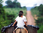 06.27.1991: João Bosco Alves da Silva, 13, and his brother José, 8, transport rice harvested on land close to the Trans-Amazonian Highway. (Photo: Antônio Gaudério/Folhapress)