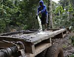 A Ka'apor Indian warrior pours gasoline on a logging truck before setting fire to it during a jungle expedition to search for and expel loggers from the Alto Turiacu Indian territory, near the Centro do Guilherme municipality in the northeast of Maranhao state in the Amazon basin