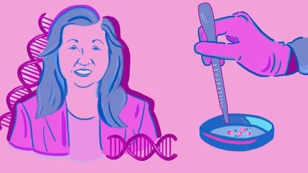 O trabalho científico de Ann Tsukamoto já levou a grandes avanços na medicina