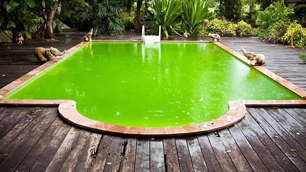 Levantamento nos Estados Unidos apontou aumento de surtos de doenças relacionadas a piscinas mal cuidadas