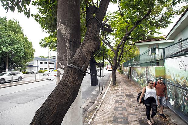 Fio enrolado entre o poste e uma árvore, logo na saída do Hospital do Servidor, na av. Ibirapuera
