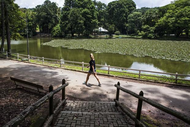 SAO PAULO - SP - 10.01.2017 - Publico caminha no Horto Florestal. Após vacinacao contra febre amarela, SP reabre Horto e outros dois parques. (Foto: Danilo Verpa/Folhapress, ESPORTE)