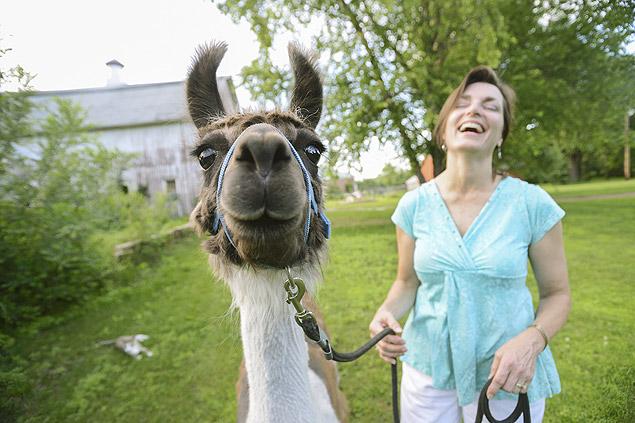 Susan Morgan, que cria lhamas em Hastings, Minnesota, diz que os animais estabelecem relacionamentos murmurando