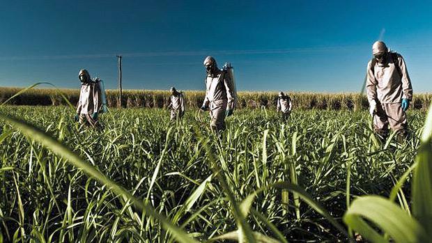 Mais de 1.100 pessoas morreram por intoxicação com agrotóxico no país em 8 anos