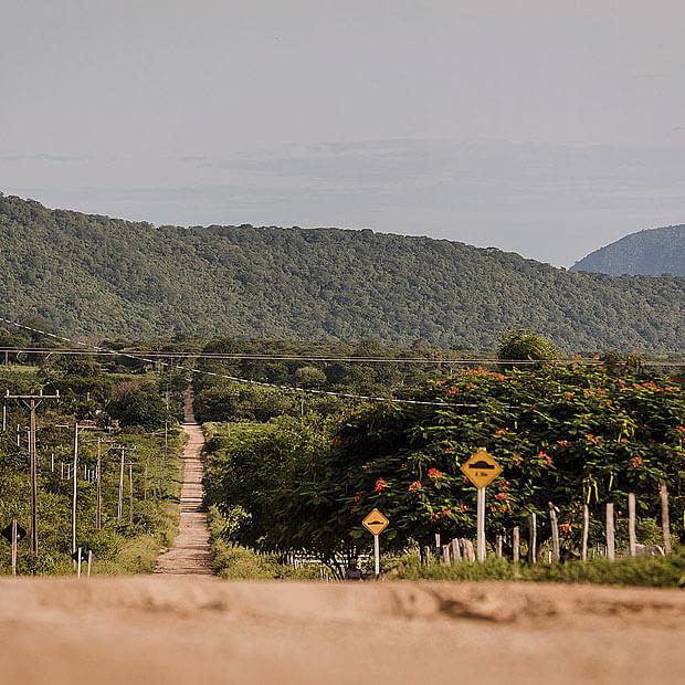 """CORUMBA, MS, BRASIL, 10-02-2015: Estradas vicinais chamadas de """"cabriteiras"""" por onde passa maior parte do contrabando e descaminho. Tudo sobre contrabando. Região de fronteira Brasil/Bolívia usada como rota para entrada de contrabando e descaminho ao país. ***MOBILE*** ***EXCLUSIVO FOLHA***"""