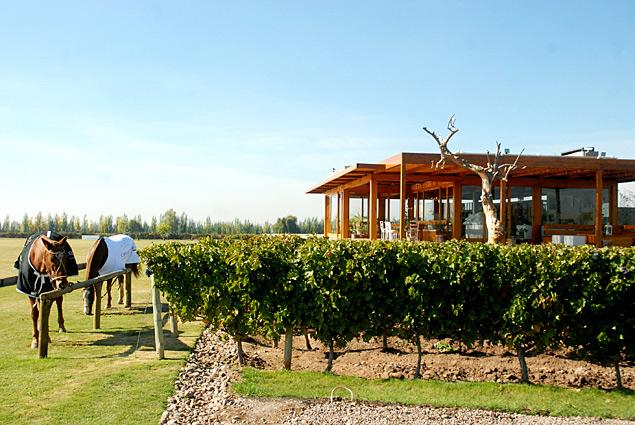 Cheval de los Andes tem campo de polo e recebe visitantes para almoços harmonizados