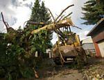 Trator retira árvore derrubada durante a passagem de tornado por Lumda, na Alemanha