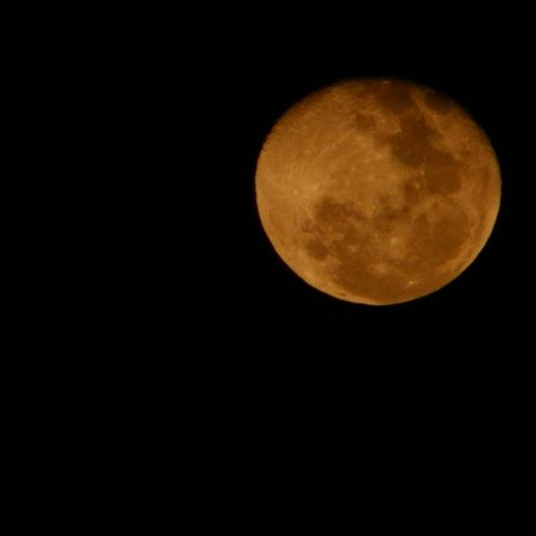 Veja imagens do eclipse total da Lua