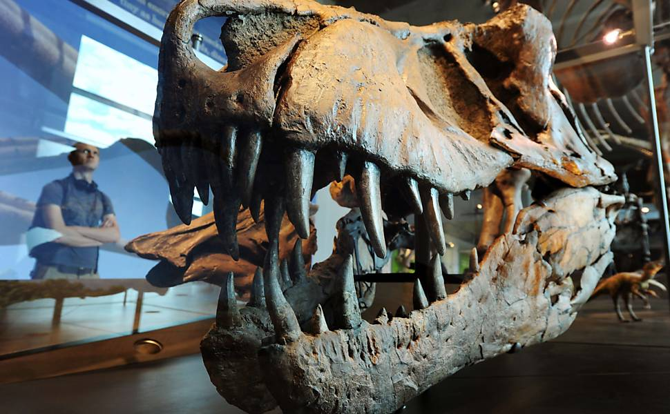 Dinossauros no Museu de História Natural de Los Angeles