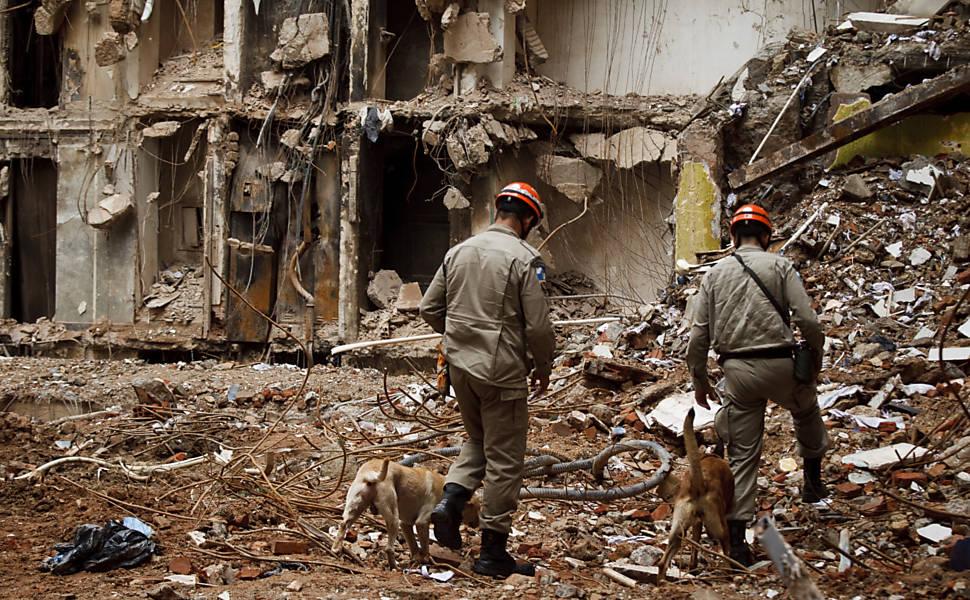 Cães trabalham até 8 horas após desabamento