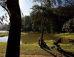 Pessoas descansam às margens do lago da Aclimação, em São Paulo <a href=