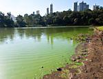 Vista do lago da Aclimação; prefeitura `achou' duto e suspendeu obras no local <a href=