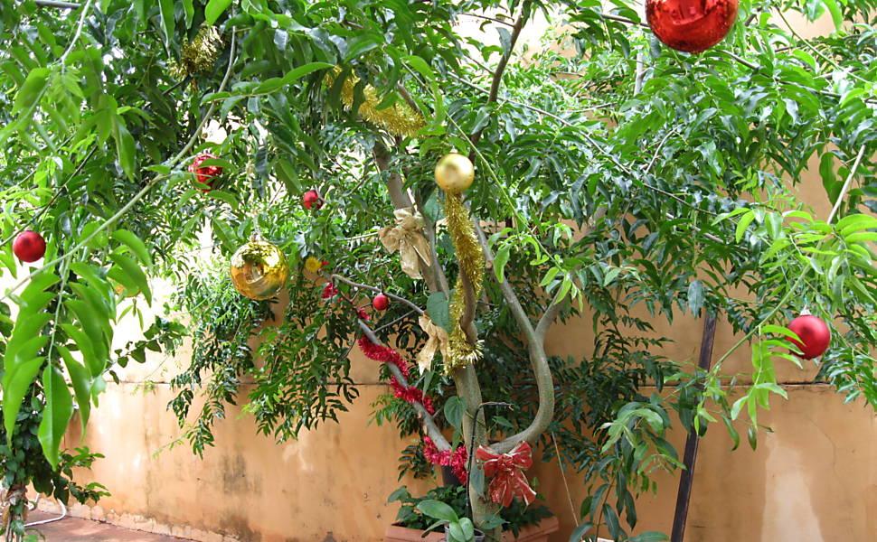 Decoração de Natal pelo país