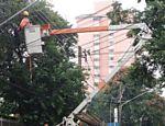 A queda danificou a rede elétrica local. A energia foi reestabelcida no início da tarde desta segunda-feira (1º)