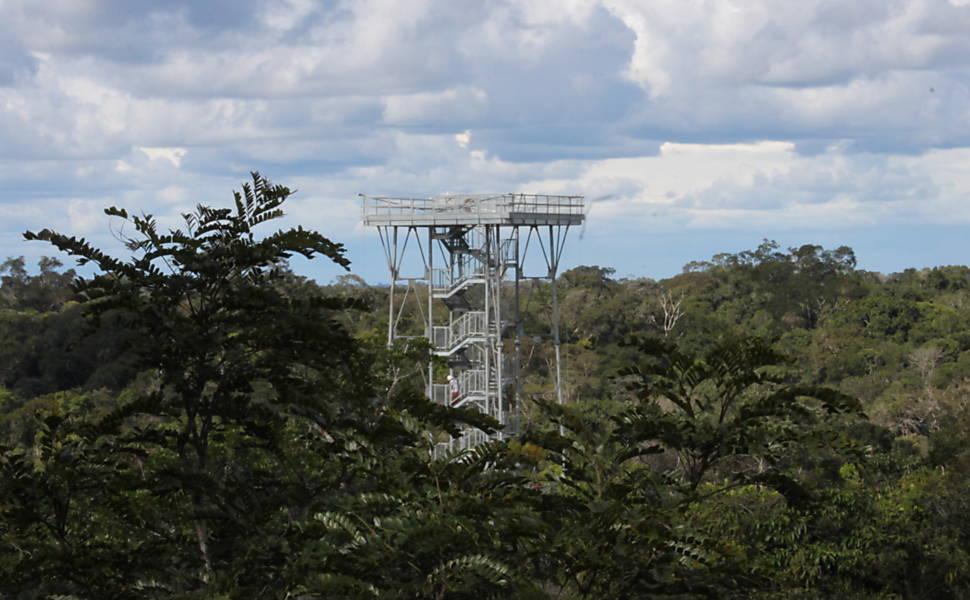 Torre gigante na Amazônia