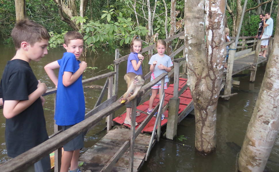 Turistas na Amazônia