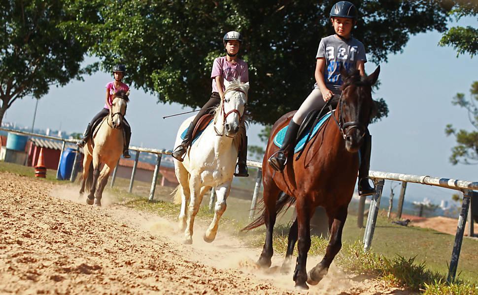 Universidade do Cavalo