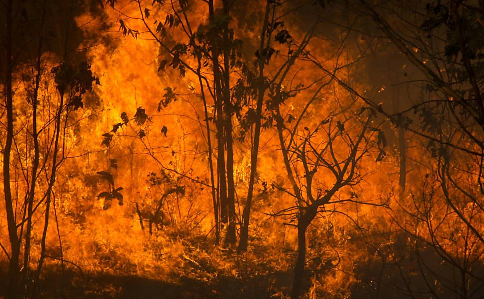 Seca provoca incêndio em Brasília