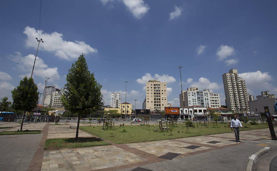 Grupo faz plantio de árvores sem autorização da prefeitura