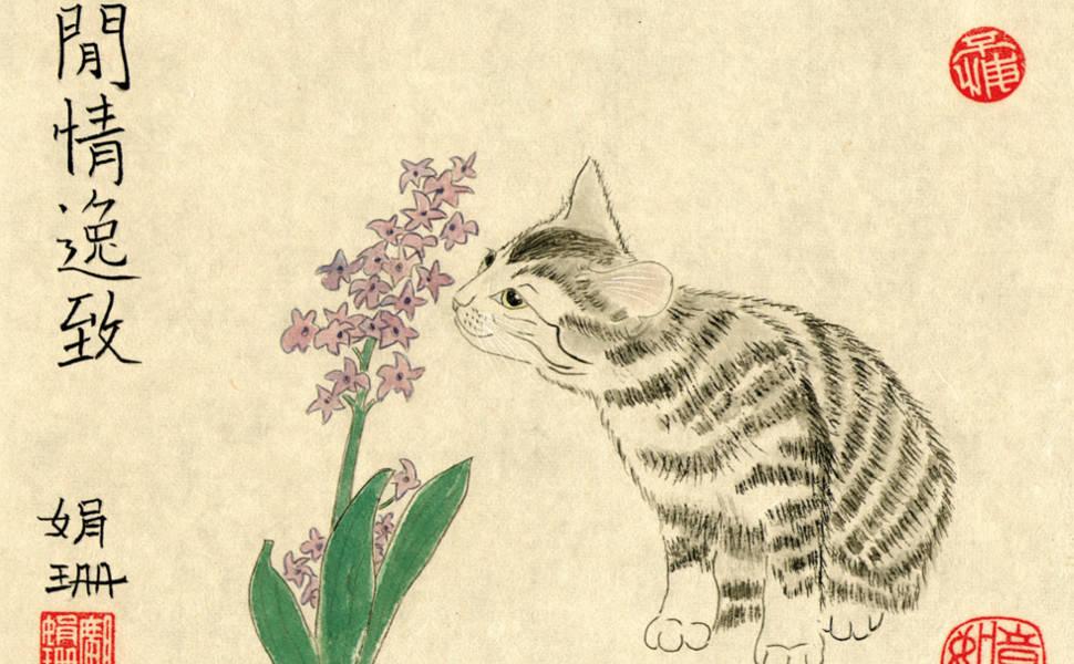 O Gato Filósofo