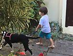Dom, 3, filho de Luana Piovani e Pedro Scooby, com o cão Lata na nova casa da família, na Barra da Tijuca, no Rio