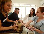 Luisa Mell, Rafael Leal e funcionárias da clínica com o cachorro Tyson