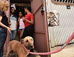 Luisa Mell na casa da família que é dona do cachorro Tyson
