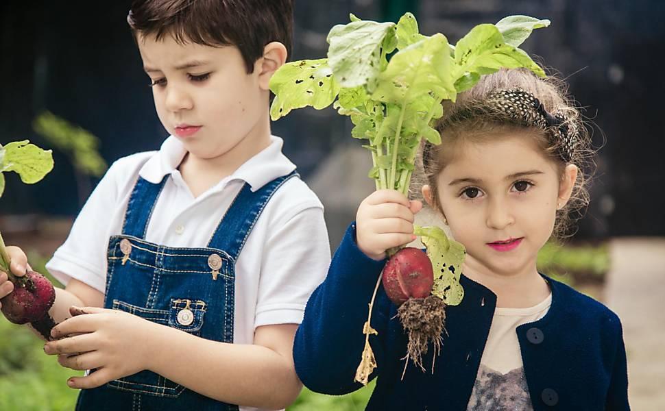 Crianças cultivam horta