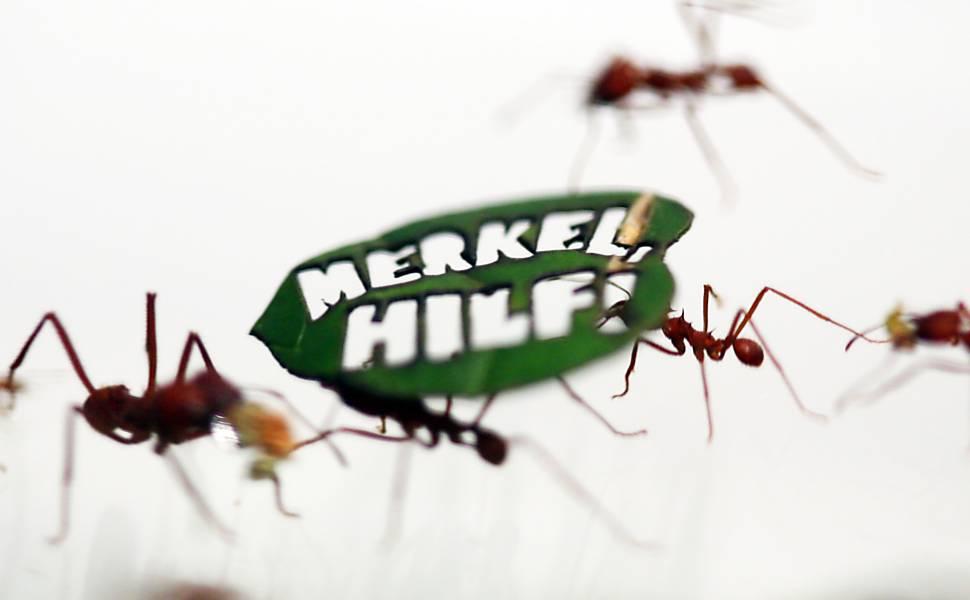 Protesto de formigas