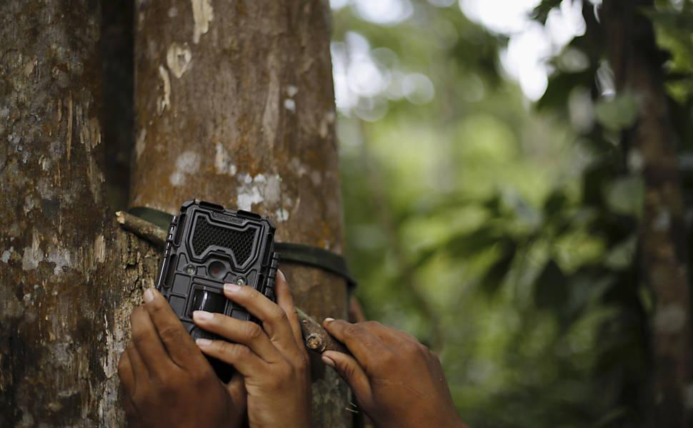 Índios tecnologia de câmeras contra desmatamento