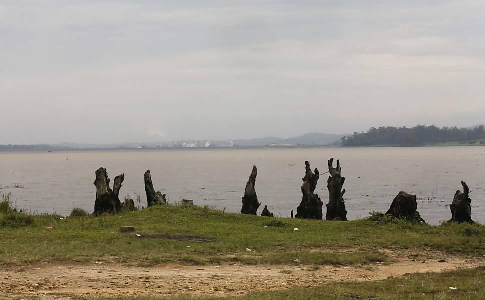 Reflorestamento de mananciais