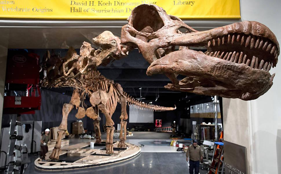 Fazendeiros encontram pistas do maior Titanossauro