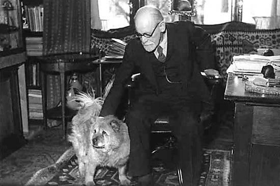 Freud em 20 imagens