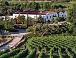 Vinhedos e a sede da Monte da Ravasqueira, vinícola do Alentejo, no centro-sul de Portugal