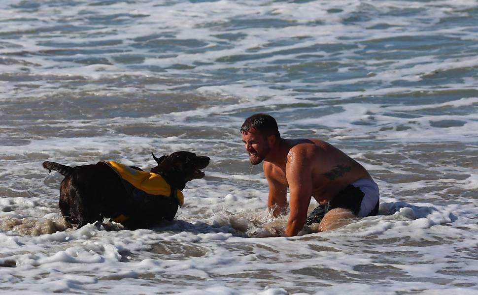 Americano e cachorra com câncer fazem viagem de despedida