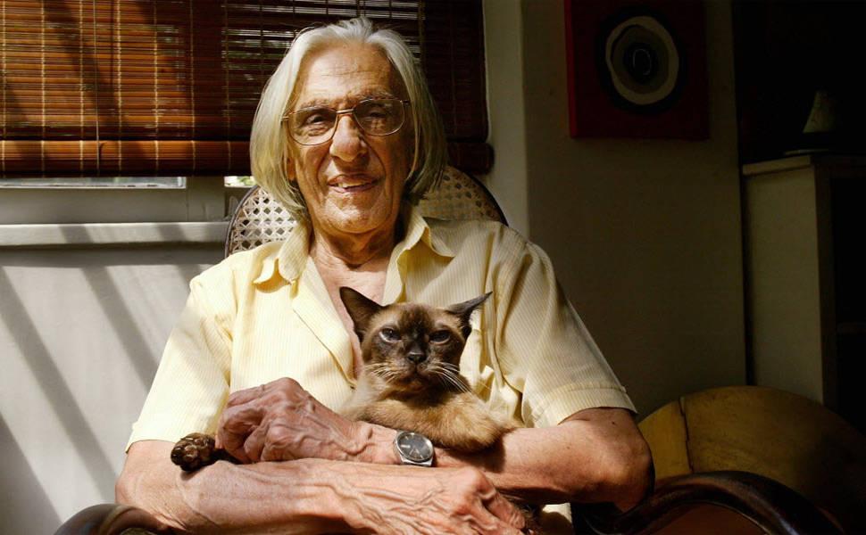 Escritores e gatos