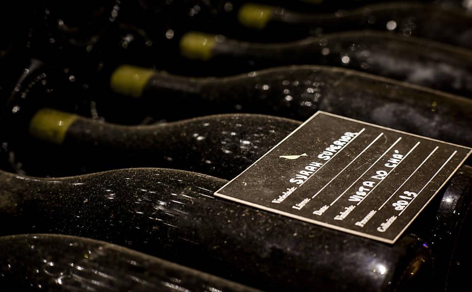 Vinhos no interior de SP