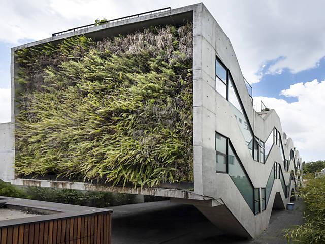 Resultado de imagem para jardins verticais urbanos intea Tendência: Jardins Verticais  Urbano - uma oportunidade para as nossas cidadesrnacionais