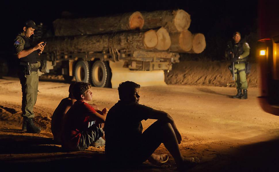 Comércio ilegal de madeira