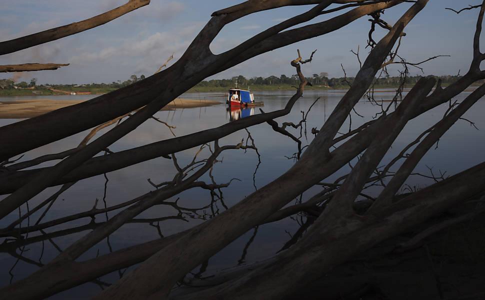 Desmatamento e seca às margens da Transamazônica