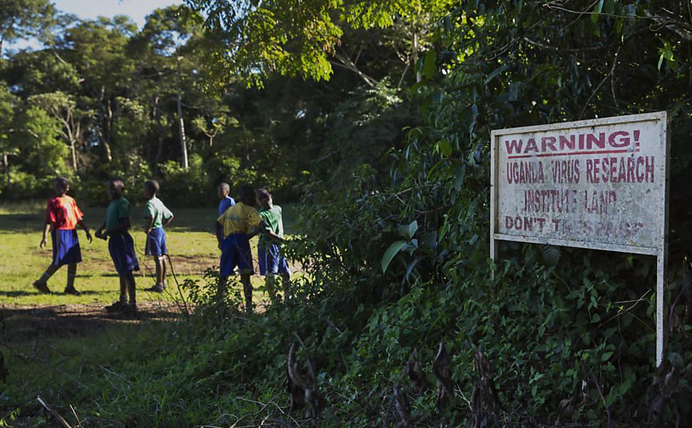 A descoberta do zika em Uganda